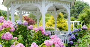 Les affaires de mariage fleurissent pour les jardins de New York